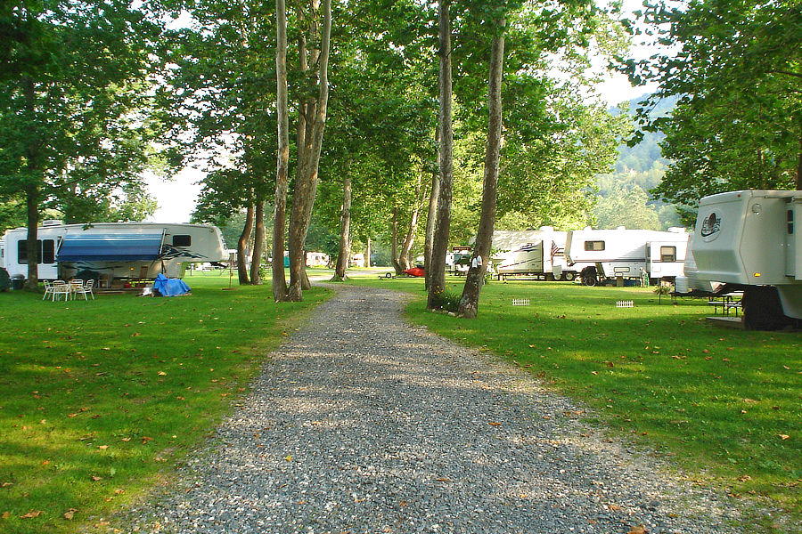 Sunny and shaded campsites